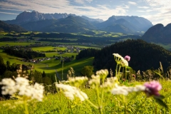 Landschaft_Kössen_Sommer